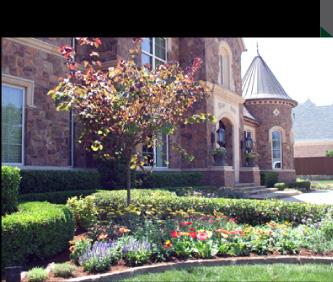 Dallas landscape design landscape construction for Dallas landscape design